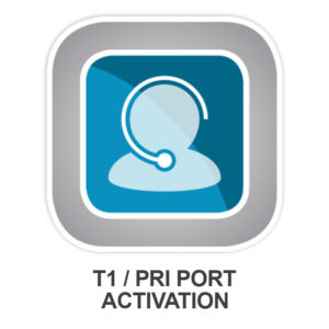 Allworx T1 PRI Port Activation